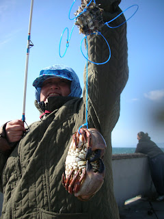 Found fruit dungeness crab fishing pacifica pier for Fishing pole crab trap