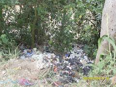 Vertimiento de residuos sólidos en la zona