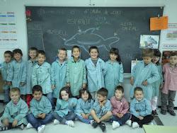 La classe dels dofins!