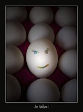 Yumurtanın böylesi...