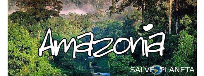 Ong Amazonia