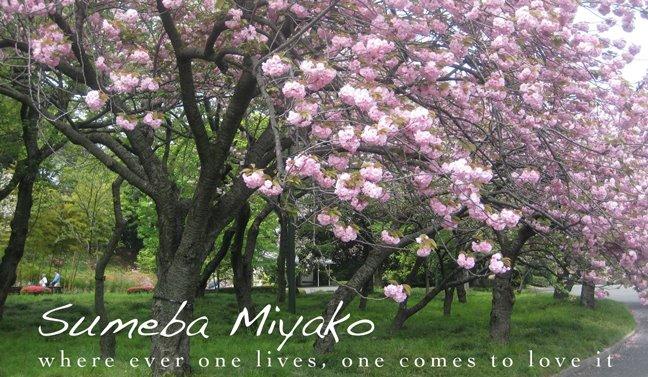 Sumeba Miyako