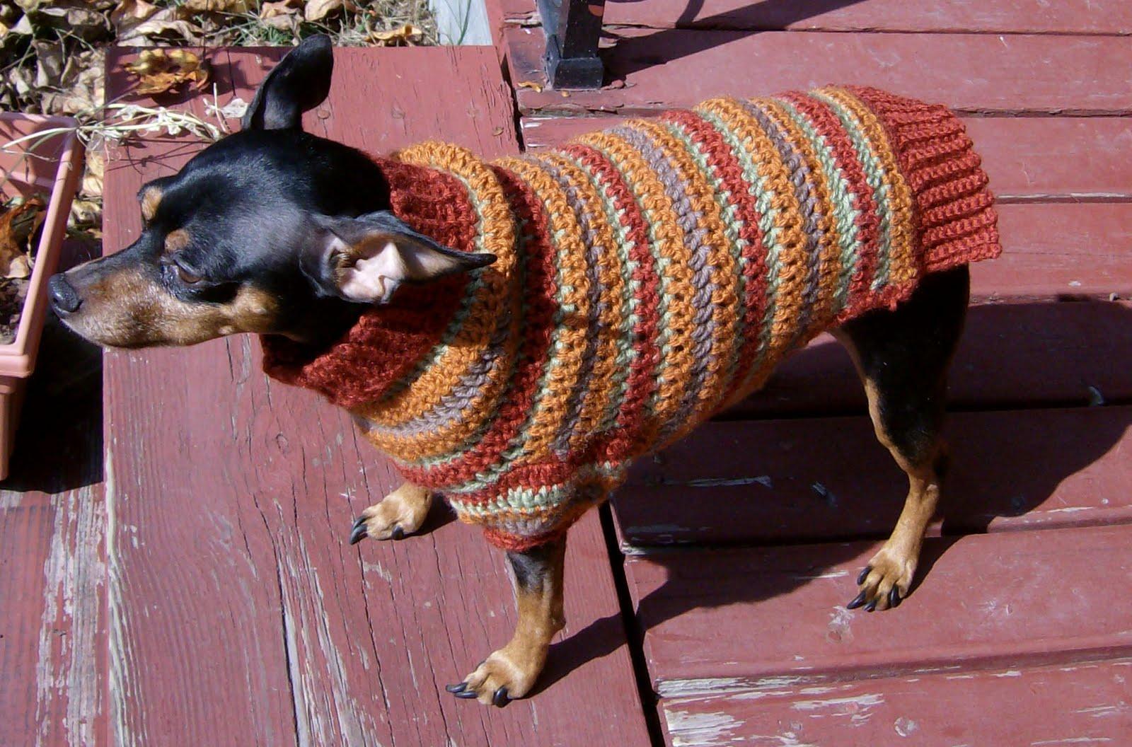 Min Pin Sweater Paradise Autumn Stripes Crochet Min Pin Sweater