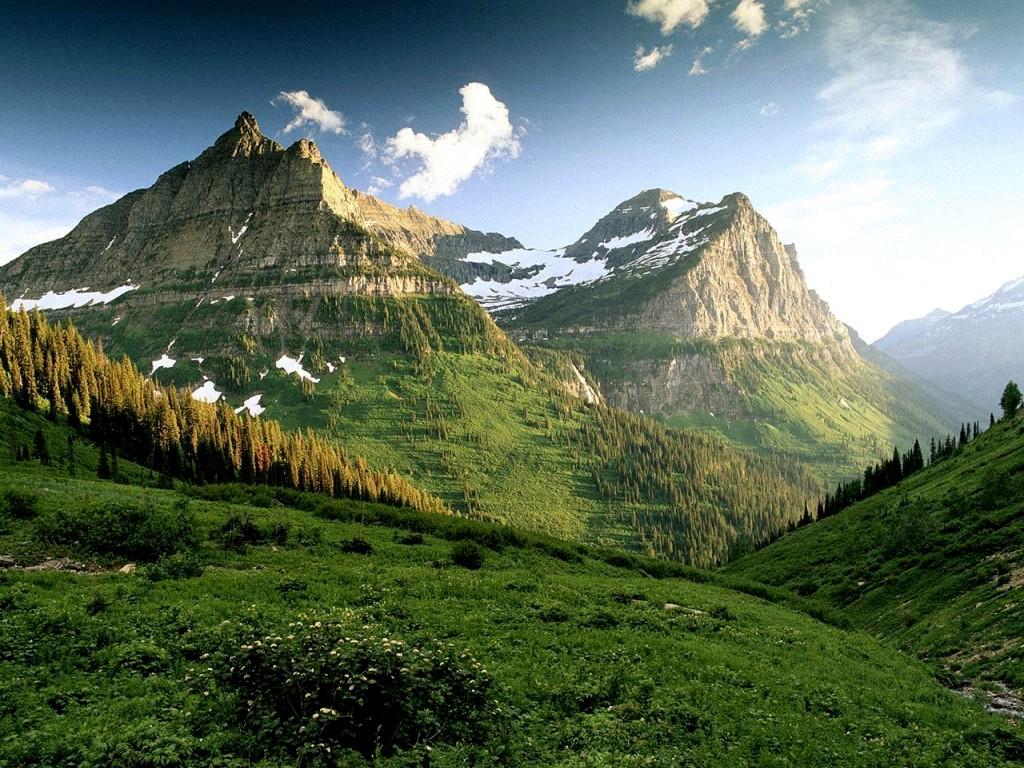 http://4.bp.blogspot.com/_M9Cb6zkRQFQ/TRRd6L4bRyI/AAAAAAAAB_o/cJ2K74MV8_Q/s1600/amazing-green-mountains-with-trees-lanscape-wallpaper.jpg