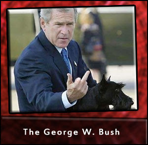 George W Bush Gives The Finger