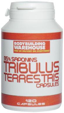 Bodybuilding Supplements - Gaspari, CNP, USPLabs