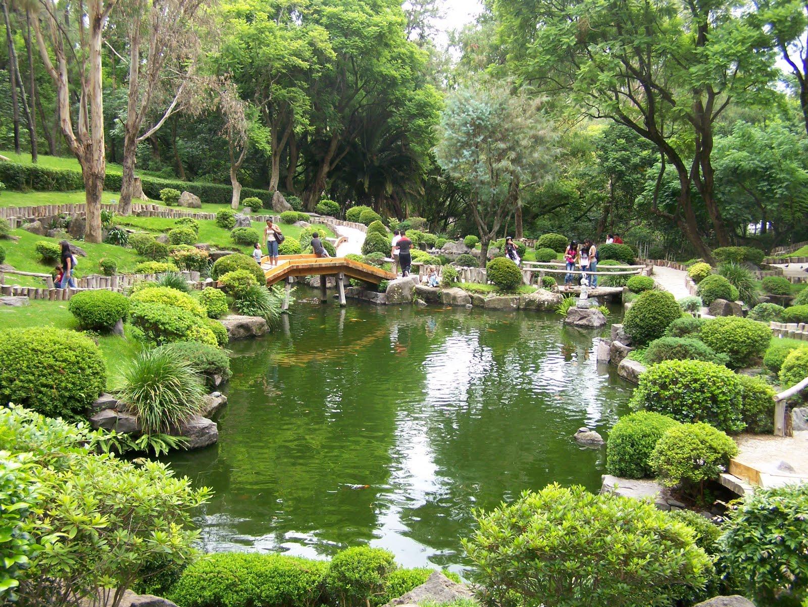 Historia de la universidad de sonora el bosque colomos y Jardin japones informacion