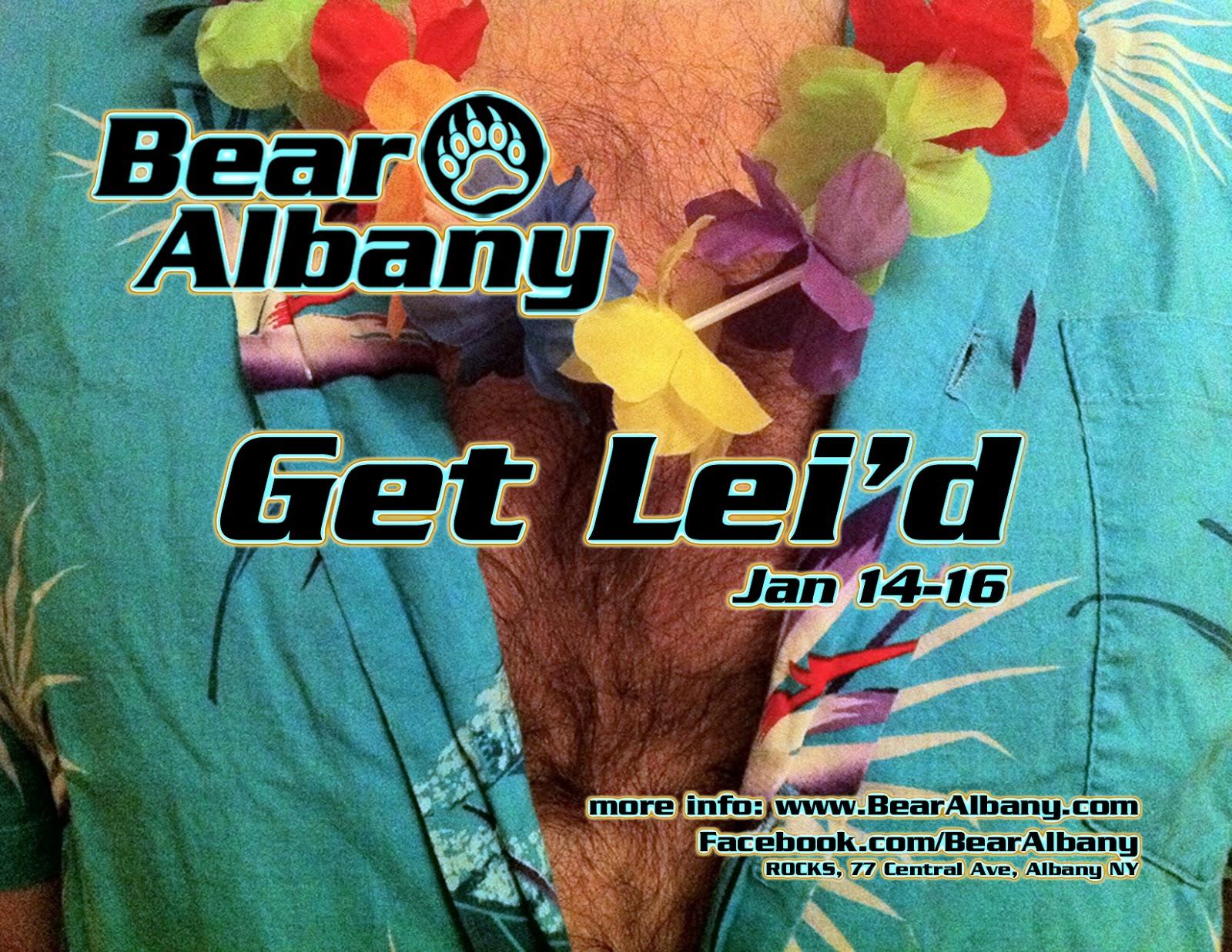 Bear Albany 2010