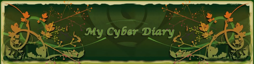 My cyber diary