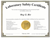 sample course completion certificate