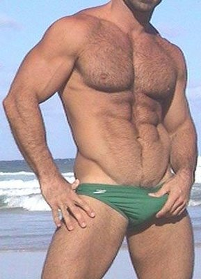 [0a9beefyHairy_Chest_2]