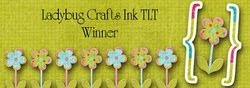 Winner at Ladybug Crafts Ink