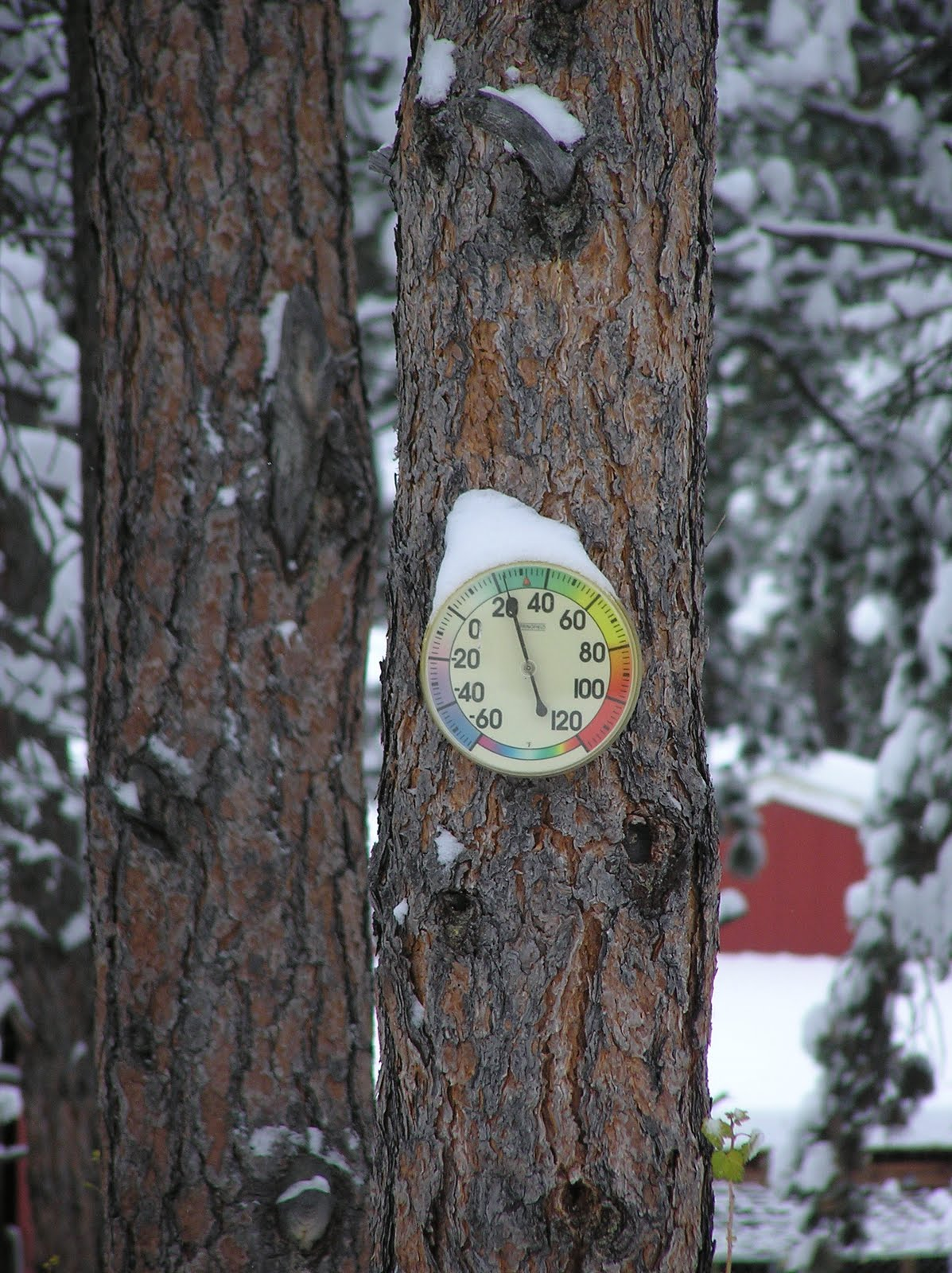 [Snow-capped+Thermometer.JPG]