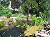 #13 Garden Design Ideas