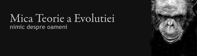 Mica Teorie a Evolutiei