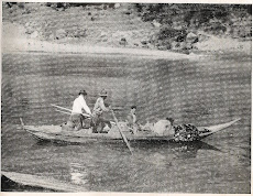 Pesca do Sável e Lampreia, 1955