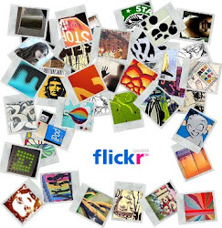 +MY FLICKR