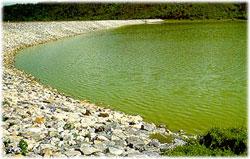 Srid Phong Dam