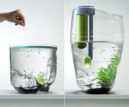Aquariass Fish Tank Toilet It Sounds Too Bizarre To Imagine But This Real Life Aquarium Really Is Part Of The If Idea Appeals Check Out On