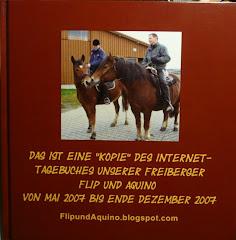 Blogbuch 2007/2008: