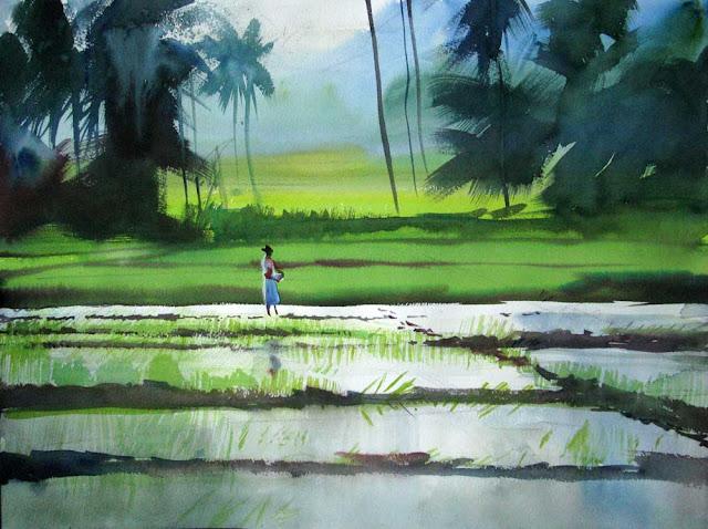 [ricefields.jpg]