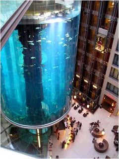 Aquadom-World's Largest Cylindrical Aquarium