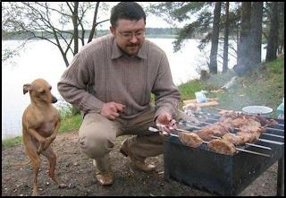 churrasco com cão