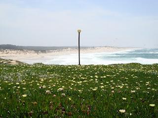 Praia do Pedrogão - Foto do lado sul da praia - A caminho da Praia da Vieira