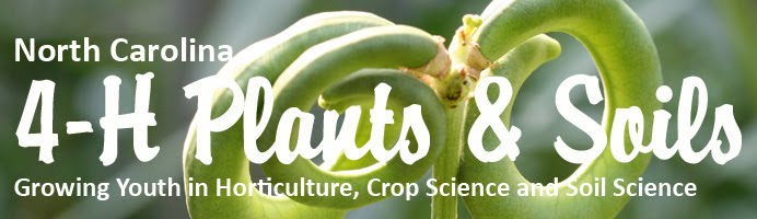 NC 4-H Plants and Soils