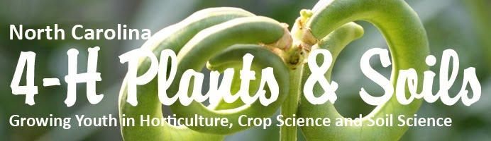 NC 4-H Plants and Soils