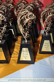 Ternados al premio dorado 2010-hacé clic
