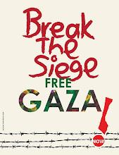 ¡Rompamos el asedio a Gaza!