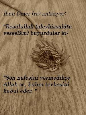 Allah+cc+t,vbey'+kabul+eder2 -