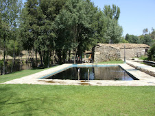 Uma piscina biológica