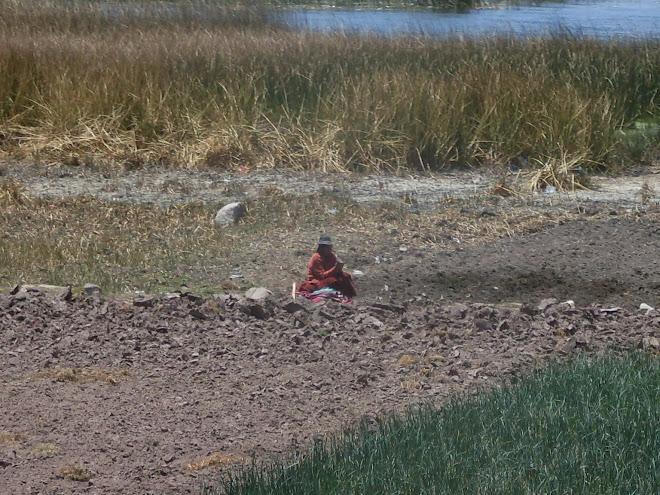 Sur les rives du Lac Titicaca