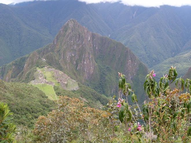 Le site vu de la Montagne Machu Picchu