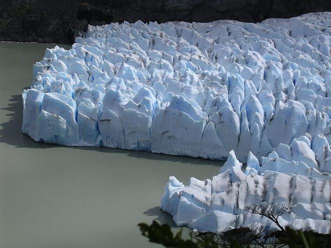 Le glacier Grey à Torres del Paine