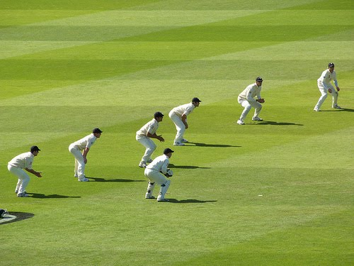 cricket - photo #43