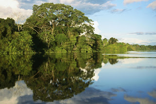 Pacaya-Samiria National Peserve, Amazonia, Peru