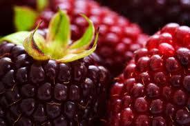 3 Alimentos ricos en Antioxidantes