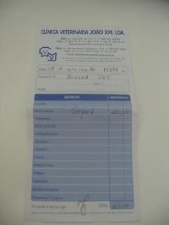 Gaspar, Macho Adulto, FIV +, Margem Sul IMG_1827