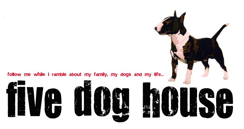 five dog house