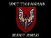 Unit Tindakan Khas