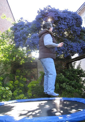 Mid-bounce on the trampoline with purple ceanothus in the background