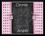 Divulgue o Omnes Angeli no seu blog! Escolha um banner: