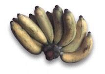 กล้วยน้ำว้าดิบ