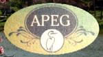 Site da APEG
