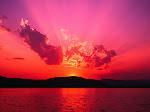 """Siapa beramal sesuai dengan perintah Allah, dia termasuk orang- yang baik."""" Ali b Hussien as"""