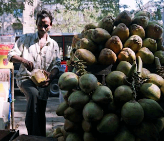 Coconut seller Mumbai