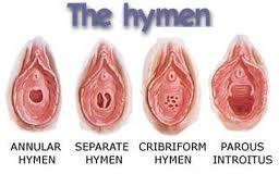 http://4.bp.blogspot.com/_MjLFrlB47RE/TQqqc2Oy9NI/AAAAAAAAADM/oCvcdNpOm2M/s1600/jenis-hymen.jpg